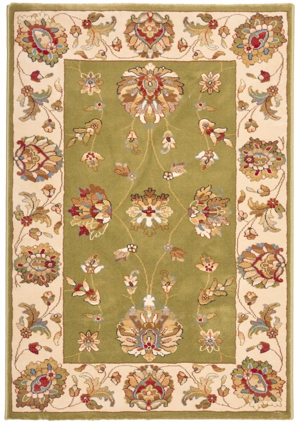 Green Traditional rug